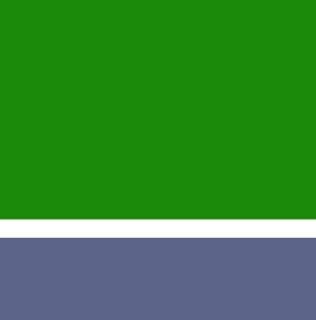 L'ADAPEI de Gironde fait sa révolution numérique.